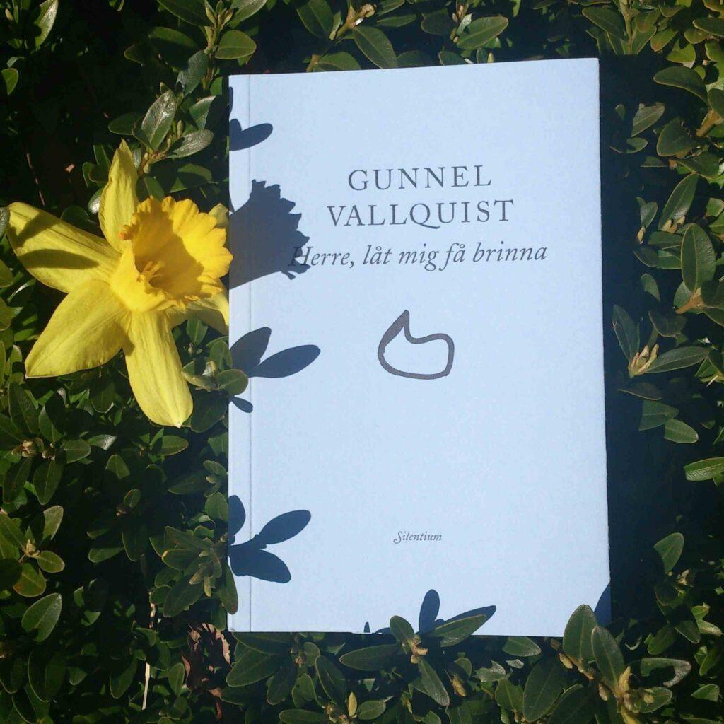 Bild GV bok